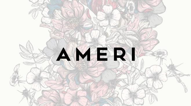 AMERI